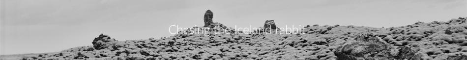 menu_iceland